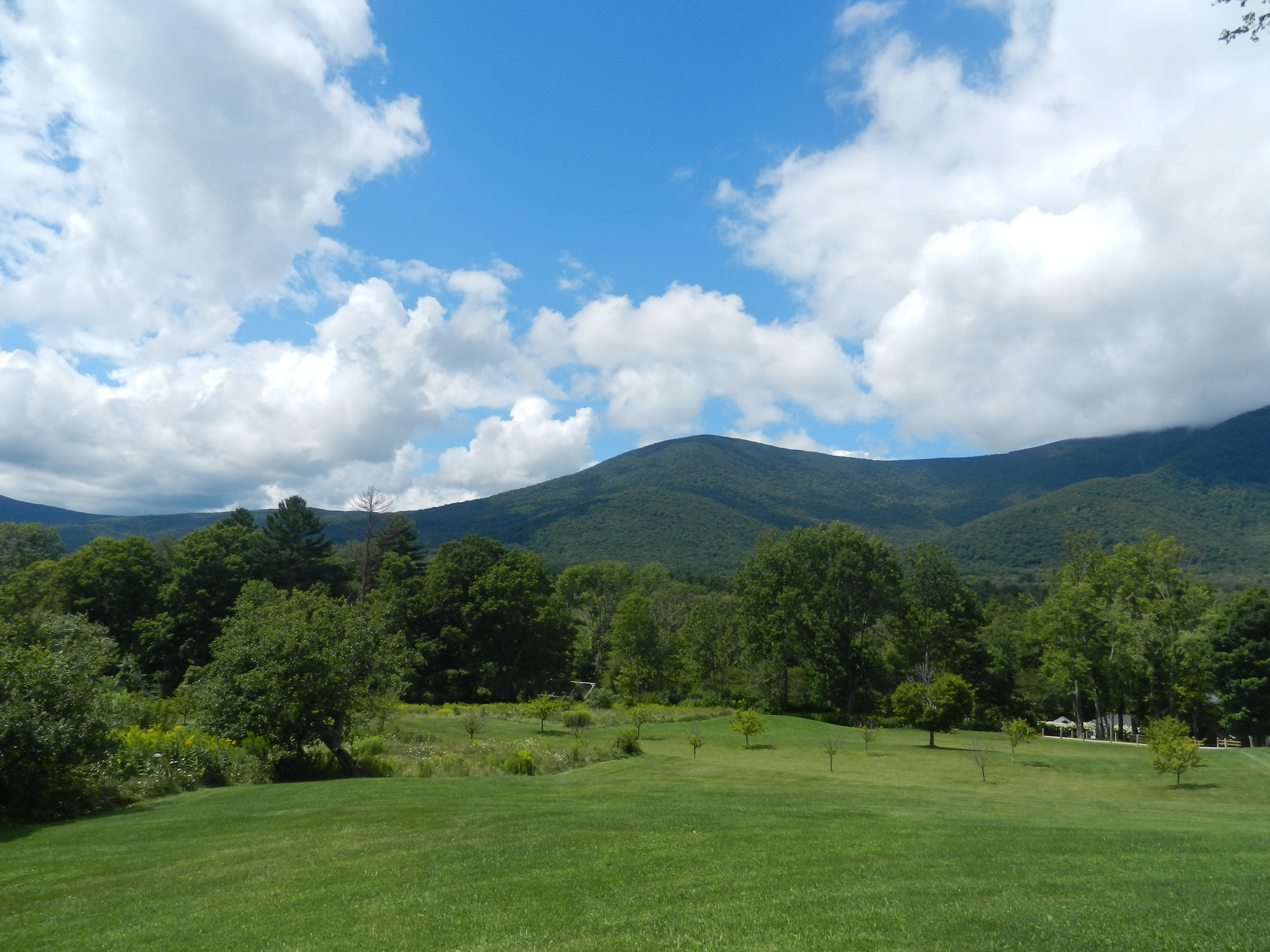 My Vegan Road Trip To The Green Mountains Of Vermont